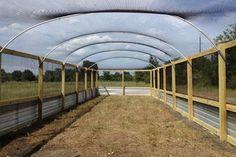 Quail Flight Pen - houston - by Harkey Fencebuilding&Ranch . : Quail Flight Pen - houston - by Harkey Fencebuilding&Ranch .