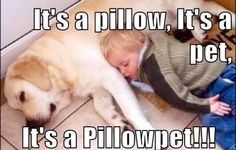 THIS is a real pillowpet.