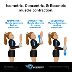 Cheerleading Muscle Contractions Did you know there are THREE WAYS that your muscles contract? Isometric, Concentric and Eccentric! BASES: avoid using ISOMETRIC contractions in your arms and legs to be more reactive to your stunt and have Cheer Moves, Cheer Stretches, Cheer Routines, Cheerleading Stunts, Cheer Tryouts, Cheer Coaches, Handstand, Youth Cheer, Tips