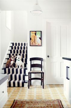 Black and white entryway with dogs