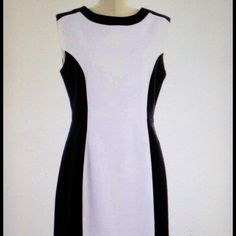"The Limited White/Black Princess Seam Sheath Dress  Coming Soon- The Limited White/Black Princess Seam Sheath Dress. Size 4. NWT. Bust: 36"" Waist 29"" Length: 38.5"" Hips:42"". Material: Polyester/Rayon/Spandex    Comment below if you are interested in this dress #the limited #sheath-dress #size4 #NWT #black&white The Limited Dresses"