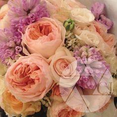 flowersalone.jpg