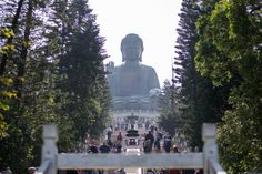 Visiting Tian Tan Buddha at Lantau Island was one of our favourite things to do in Hong Kong