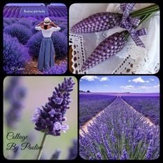 Collage by Paoline Lavanda Beautiful Collage, Purple Lilac, Collages, Emo, Beautiful Places, Palette, Colours, Stickers, Boards