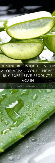 10 Mind Blowing Uses for Aloe Vera – You'll Never Buy Expensive Products Again
