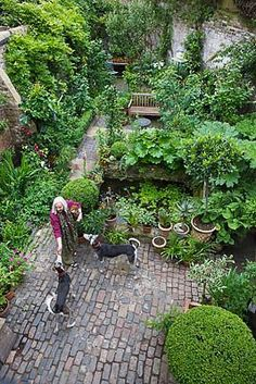 Shapiro's Garden: Artists London home and garden
