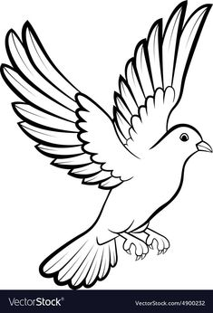 Vector illustration of cartoon dove birds logo for peace concept and wedding design. Dove Outline, Bird Outline, Pencil Art Drawings, Bird Drawings, Drawing Sketches, Adobe Illustrator, Dove Tattoo Design, Tattoo Designs, Star Coloring Pages