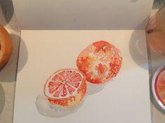 Grapefruit by cindy phelan