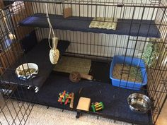 What do you think of upgrades to a extra large dog cage for our English Spot Athos? Indoor Guinea Pig Cage, Indoor Rabbit House, Rabbit Hutch Indoor, Indoor Rabbit Cages, Diy Bunny Cage, Bunny Cages, Dog Cages, Rabbit Cage Diy, Diy Bunny Hutch