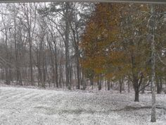 Major winter storm hits Crossville, TN on November 27, 2013.  Brrrrrrrrrrrrrr.