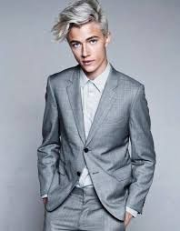 Image result for men with grey hair