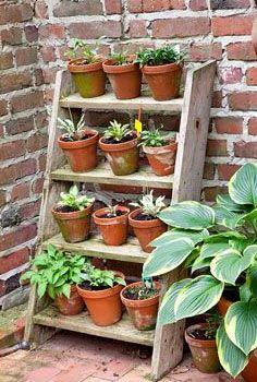 Pflanzen step ladder herb garden - look at how adorbs Mary Powers Anna Diehl Long Angela Gray Maulon