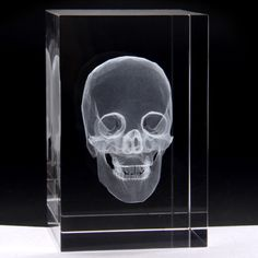 This is the perfect piece for your desk! 5 cm x 5 cm x 8 cm Fall 2018, Holographic, Health Care, Medicine, Skull, Canada, Desk, Australia, Science