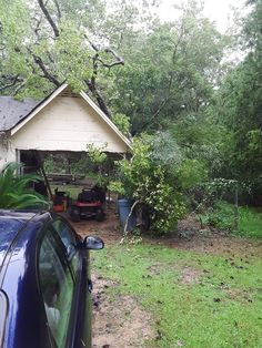 Hurricane Images, Back Home, Cabin, House Styles, Plants, Home Decor, Decoration Home, Room Decor, Cabins