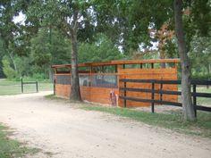 Wood pasture shelter with translucent panels