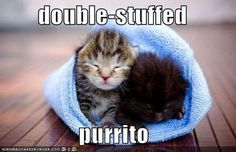double-stuffed purrito