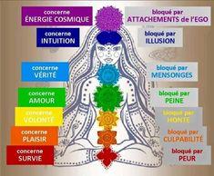 Chakra Meditation 120752833745799561 - Les chackras Source by meplard Chakra Meditation Music, Meditation Songs, Best Meditation, Mindfulness Meditation, 7 Chakras, Ayurveda, Le Reiki, Plexus Solaire, Religion
