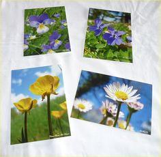 Lot de 4 cartes postales 10x14cm avec des photos de pâquerettes,de violettes,de pensées et de boutons d'or : Cartes par celinephotosartnature Or, Nature, Photos, Etsy, Violets, Packaging, Buttons, Handmade Gifts, Thinking About You
