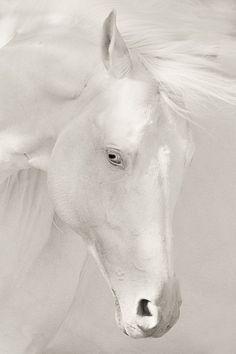 .White magic