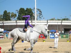 equestrian vaulting | Events of the Month: JULY - Horse Vaulting