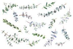 Eucalyptus foliage watercolor clipart with modern greenery, Eucalyptus wedding greenery, Green botanical leaves, EUCF Watercolor Clipart, Watercolor Illustration, Graphic Illustration, Eucalyptus Wedding, Botanical Drawings, Watercolor Wedding, Clip Art, Painting, Etsy
