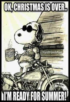 Christmas is over.now ready for summer Charlie Brown Quotes, Charlie Brown And Snoopy, Snoopy Love, Snoopy And Woodstock, Animal Memes, Funny Animals, Motorcycle Humor, Harley Davidson Quotes, Peanuts Cartoon