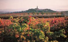Otoño en La Rioja, más allá de los tópicos