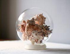 vintage display globe with seashells