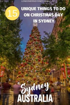Are you spending Christmas Day in Sydney but not sure what to do? Here's 15 unique and memorable Sydney activities you'll love! Coast Australia, Queensland Australia, Australia Travel, Western Australia, Visit Australia, Nature Photography Tips, Ocean Photography, Wedding Photography, Christmas Things To Do