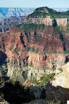 The North Rim, among the most serene, beautiful, and remote places in the United States Wonderful Places, Great Places, Places To See, Beautiful Places, Beautiful Gorgeous, Grand Canyon Arizona, Grand Canyon National Park, Arizona Usa, Alaska