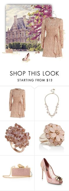 """""""Lovely Dress"""" by greerflower ❤ liked on Polyvore featuring Zimmermann, Betsey Johnson, Forever New, KOTUR and Dolce&Gabbana"""