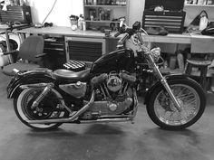 My XL-95