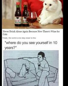 cat lovers  forever alone  thank god for wine