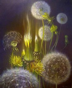 Dandelions starred by French artist painter Pierre Marcel.  fabulous style