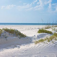 The 31 Best Beach Vacations | Splendid SandSiesta Beach, Siesta Key, Sarasota, Florida | CoastalLiving.com