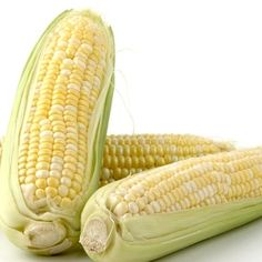 Sweet corn is best served with as much butter as possible.