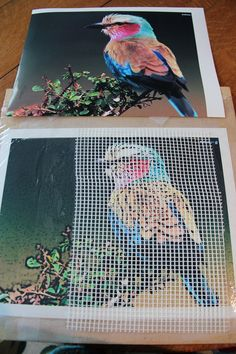 "This is how I use the mesh method for mosaics. To see the final artwork, go to my board ""Mosaics"" or ""Mosaic Birds""."