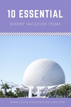 Top 10 Items For Your Disney Vacation! – Lizzie In Adventureland Disney Vacation Club, Disney Vacation Planning, Walt Disney World Vacations, Disney Resorts, Trip Planning, Disney Parks, Disney Travel, Disney World Guide, Disney World Tips And Tricks