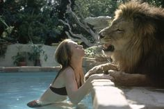 Neil The Lion & Melanie Griffith
