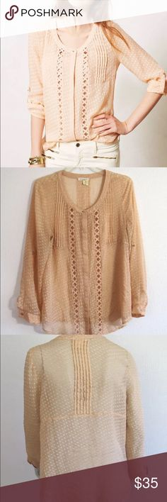 Meadow Rue Sheer Blouse Excellent Used Condition.  Smoke free home.  Very pretty Blouse...perfect for day to night! Anthropologie Tops Blouses