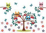sowy ma drzewie