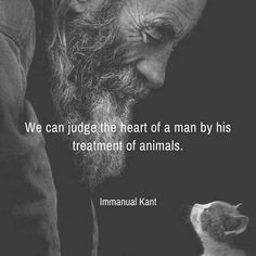 We can judge the heart of a man by his treatment of animals. Love Your Pet, Love Pet, Veterinarian Quotes, Esa Letter, Animal Letters, Emotional Support Animal, Animal Quotes, Pet Quotes, Life Quotes