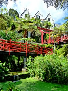 The wonderful Monte Palace Tropical Garden in Funchal, Madeira Island, Portugal