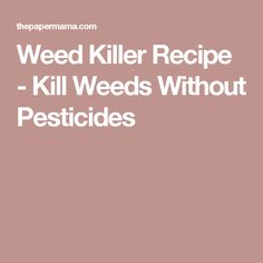 Weed Killer Recipe - Kill Weeds Without Pesticides
