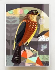New Zealand native Karearea print Wall Art For Sale, Diy Wall Art, Bird Artwork, Native Art, Christmas Drawing, New Art, New Zealand, Nativity, Graphic Art