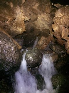Myles Fullmer, Lead Guide at Horne Lake Cave Tours & Outdoor Centre, has taken people of all ages, shapes and sizes through the caves at Horne Lake. Vacation Destinations, Vacation Trips, Outdoor Centre, Cave Tours, Vancouver Island, Travel, Viajes, Traveling, Tourism
