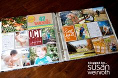 Project Life - Week 47 by Susan Weinroth