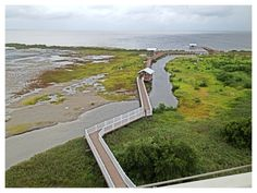 Ariel view from the Observatory Deck at the South Padre Island Birding and Nature Center