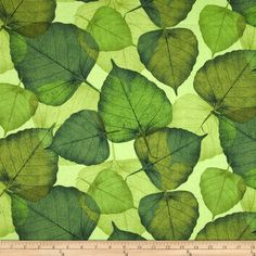Flora Large Leaf Green from @fabricdotcom  Designed by Chong-a Hwang for Timeless Treasures, this cotton print features a leaf motif.  Perfect for quilting, apparel and home décor accents.  Colors include shades of green.