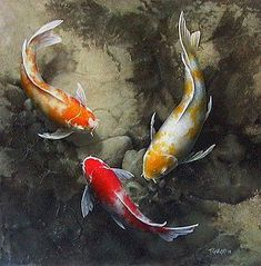(Canada) A warrior's fish by Terry Gilecki ). acrylic on canvas. Koi Art, Fish Art, Koi Painting, Stone Painting, Koi Fish Pond, Fish Ponds, Fish Drawings, Animal Drawings, Watercolor Fish